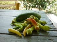 Serifos, cucumbers, peppers, home, summer