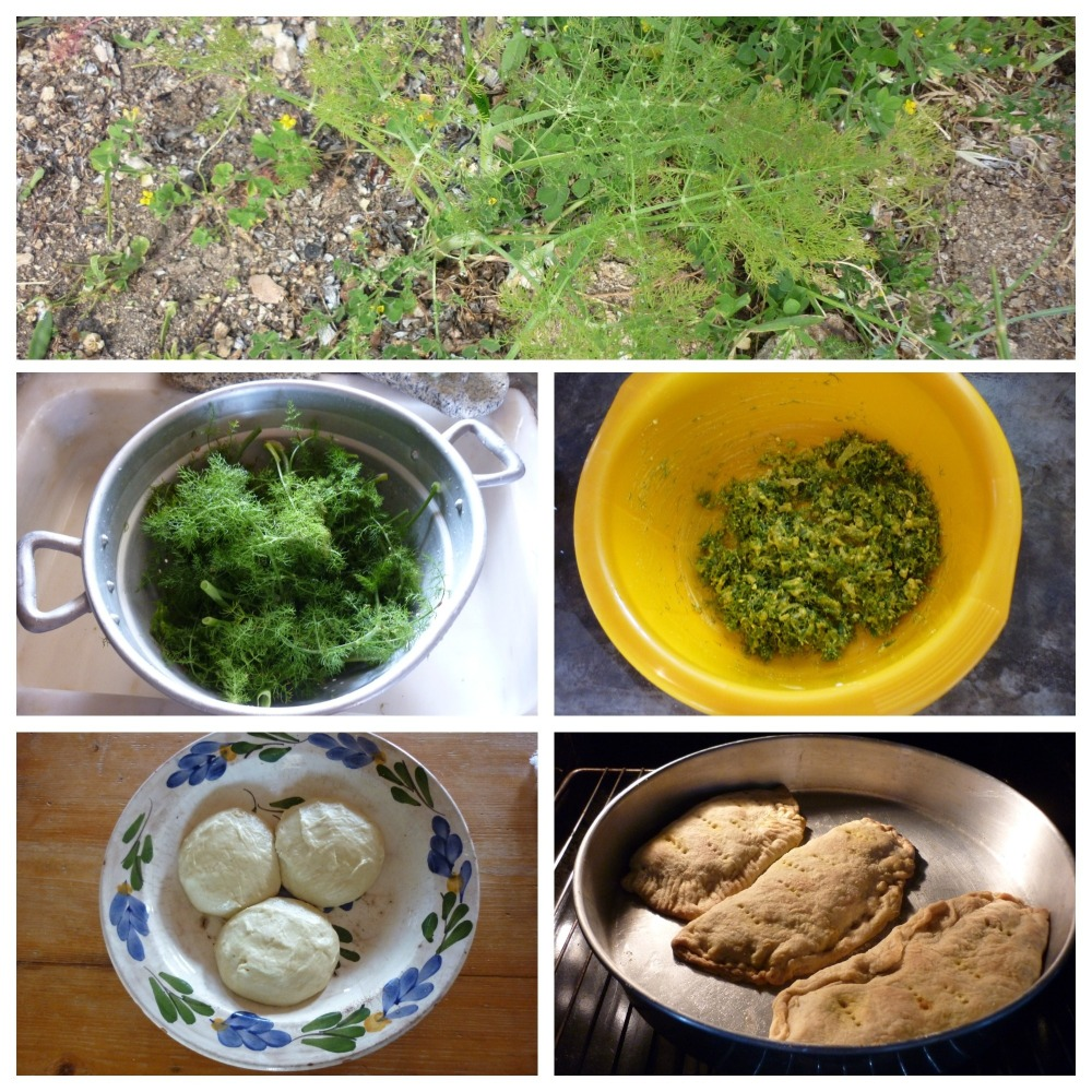 serifos-nature-fennel-pie-thewritershome-rental-green